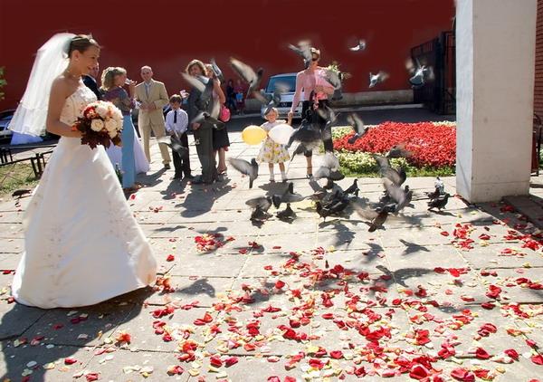 Схема организации свадьбы.