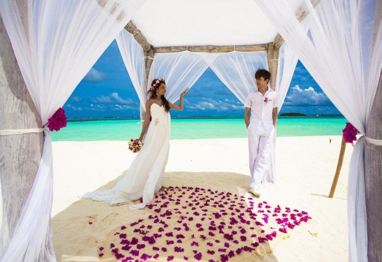 Honeymoon angebote