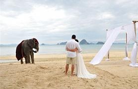 Фото свадьба на шри ланке